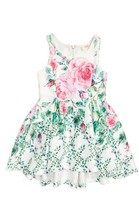 Baby Sara Infant Girl's Floral Print Sleeveless Dress