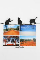 Urban Outfitters Cat Walk Photo Clip - Set Of 8