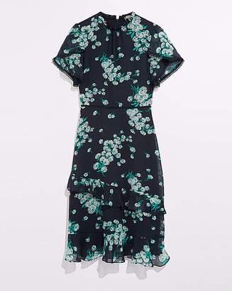 Oasis Curve Dandelion Print Dress