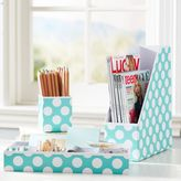 Printed Desk Accessories, Set of 3: Magazine Caddy, Divided Tray and Cup, Pool Dottie