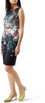 Hobbs London Molly Floral Dress