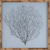 The Well Appointed House Natural Coral Sea Fan Wall Art on Blue Mat with a Natural Frame
