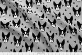 Spoonflower Boston Terriers Fabric - Boston Terrier Grey Boston Terrier Dog Cute Pet Dog Breed Fabric by andrea_lauren - Printed on Kona Cotton Fabric by the