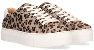 Maruti Grey Leopard Ted Trainer - 39 - White/Grey/Brown