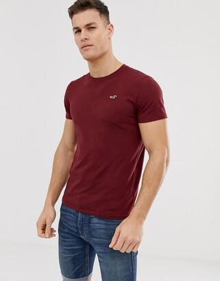 Hollister crew neck seagull logo t-shirt in burgundy-Red