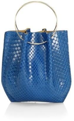 The Row Micro Flat Circle Python Bucket Bag