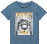 Hurley Baby Boy Shark in Glasses Graphic Tee
