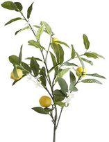 Pier 1 Imports Faux Lemon Branch