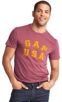 Gap Logo USA crew tee