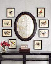 Bird Prints, Set of Four
