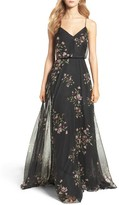 Jenny Yoo Women's Inesse V-Neck Chiffon Gown