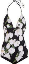 Dolce & Gabbana Printed Halterneck Swimsuit - Black