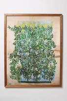 Green Leaves Framed Art