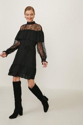 Coast Lace High Neck Long Sleeve Dress
