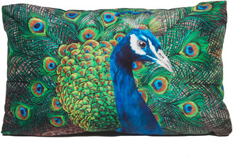 Katie & The Wolf Peacock Cushion - Small
