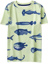 Crazy 8 Willow Green Fish Tee - Toddler & Boys