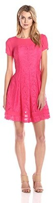 Gabby Skye Women's Lace Fit-and-Flare Dress with Sheer Panels