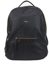 CLHEI - Gaucho Leather
