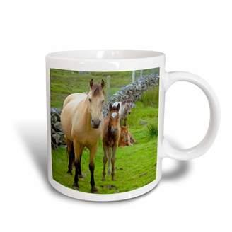 3drose 3dRose Ireland. Farm horses of the Connemara - EU15 KWI0001 - Kymri Wilt, Ceramic Mug, 15-ounce