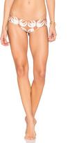 Stone Fox Swim Jessie Bikini Bottom