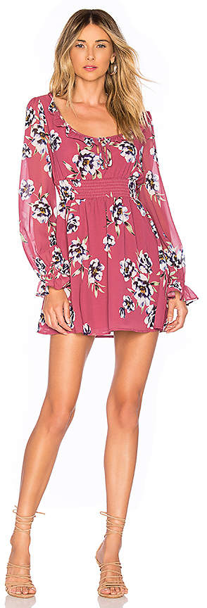 Privacy Please Michelle Mini Dress