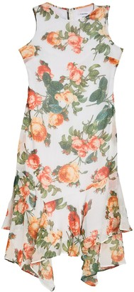 Modern American Designer Rose Floral Print High/Low Midi Dress