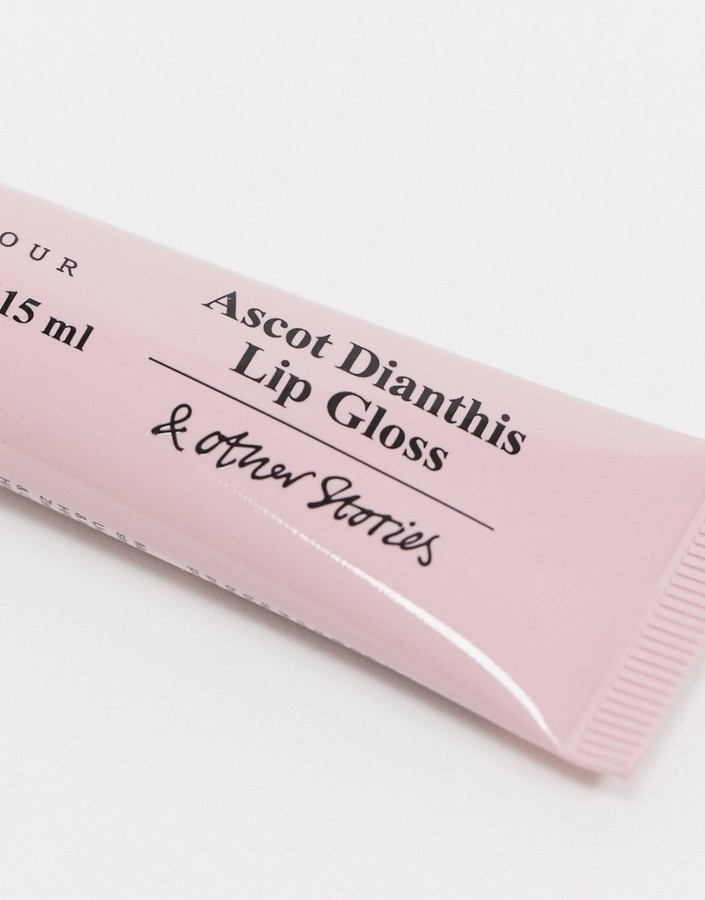 Thumbnail for your product : And other stories & lip gloss in Ascot Dianthis