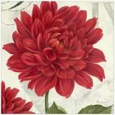 Dahlia Etude en Rouge Canvas Wall Art