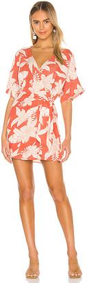 Amuse Society Mala Short Sleeve Woven Dress