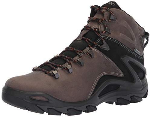 8ce2e6e7 Men's Terra Evo High Gore-Tex Hiking Shoe