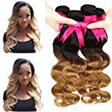 Violet Beauty 7A 100% Unprocessed Brazilian Virgin Hair Body Wave 4 Bundles Human Hair Extensions No Shedding No Tangle (14 16 18 20 inches, T1b/27)