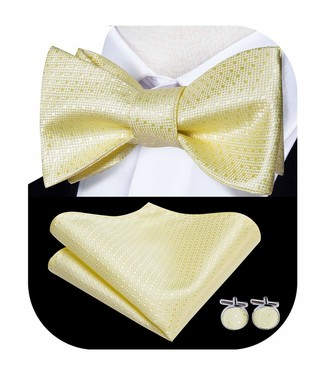 Dubulle Silk Beige Yellow Self Bow Ties for Men with Handkerchief Set