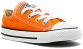 Converse Chuck Taylor Low Top Infant/Toddler