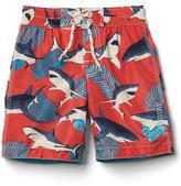 Tropical sharks swim trunks