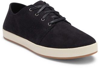 Toms Payton Perforated Sneaker
