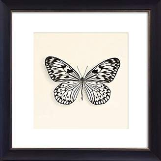 Camilla And Marc Photo Frames And Art 14 x 14-Inch Butterflies III, Multicolour, 41 x 41 x 3 cm