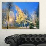 Design Art Designart PT9174-20-12 Bent Trees Mariinsky Garden Landscape Photo Canvas Print