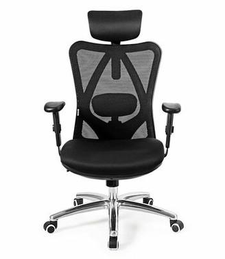 Ebern Designs High Back Mesh Office Chair Adjustable Lumbar Support&headrest Home Study Black