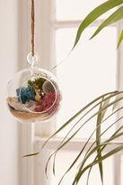 Urban Outfitters DIY Hanging Geode Terrarium