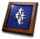 3dRose LLC ft_1018_1 Jet - Thunderbird - Framed Tiles