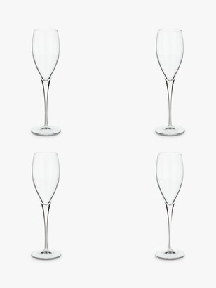 John Lewis & Partners Michelangelo Champagne Flute, Set of 4, Clear, 220ml