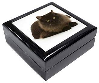 Chocolate Black Cat Keepsake/Jewellery Box Christmas Gift