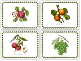 Pimpernel Pomona Placemats (Set of 4)
