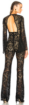 Zuhair Murad Flared Sleeve Guipure Lace Jumpsuit in Black.