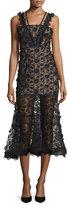 Alexis Lorelle Sleeveless Embroidered Lace Midi Dress, Black