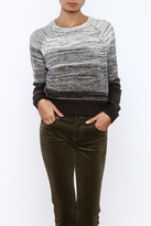 Honey Punch Cropped Sweater