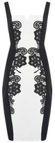 Dorothy Perkins Womens Paper Dolls Monochrome Lace Bodycon Dress