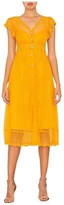 Miss Me Lace Slip Dress (Yellow) Women's Clothing