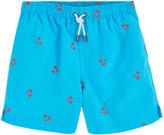 Kiwi Embroidered swim shorts