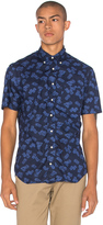 Gitman Brothers S/S Button Down